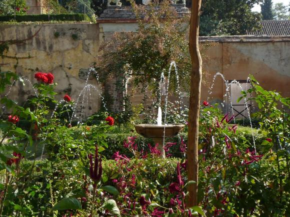 http://photographic-garden.cowblog.fr/images/Lalambra29.jpg