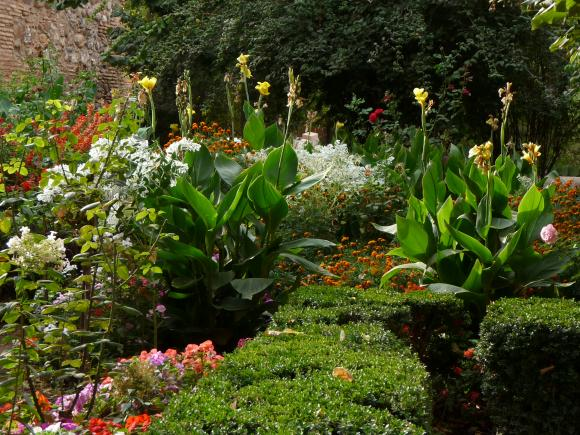 http://photographic-garden.cowblog.fr/images/Lalambra91.jpg